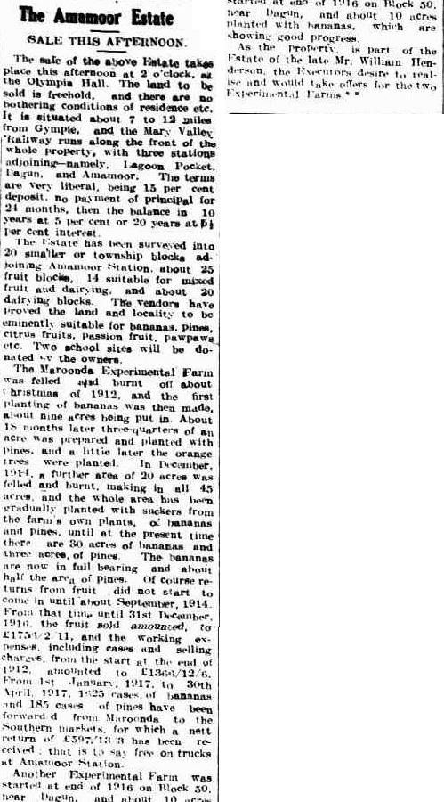 gympie-times-and-mary-river-mining-gazette-qld-1868-1919-saturday-26-may-1917-page-5
