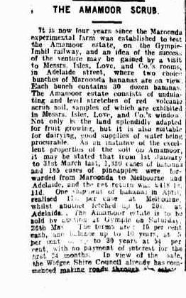 telegraph-brisbane-qld-1872-1947-thursday-10-may-1917-page-3