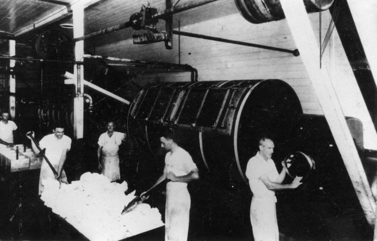Butter Making at the Wide Bay Dairy Co-operative's Gympie Factory in the 1920s