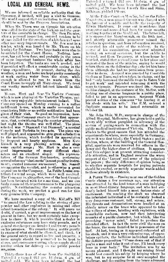 Gympie Times and Mary River Gazette, Wednesday 17 October 1877, page 3