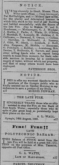 Gympie Times, Wednesday, August 17, 1881 p.2 Fire sales