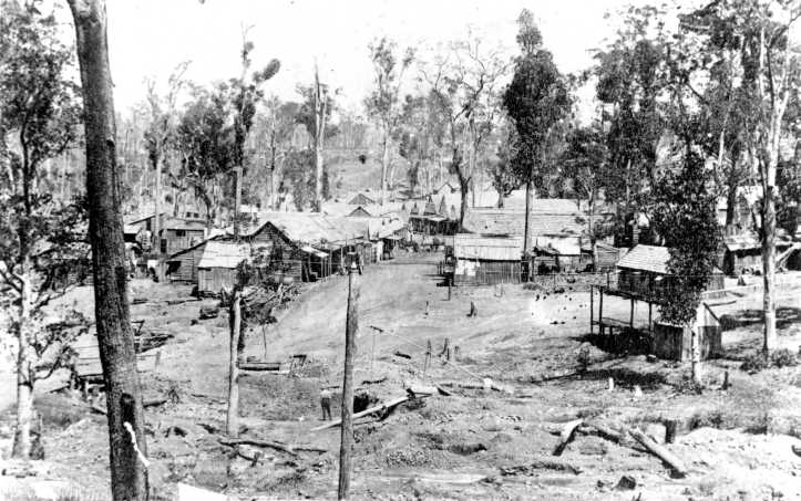 Early view of Mary Street and Nash Gully now the Fiveways from Caledonian Hill Gympie 1868