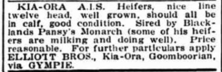 Kia Ora AIS Heifers, Elliott Brothers
